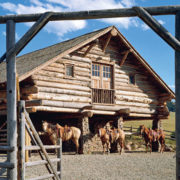 01_american_stables